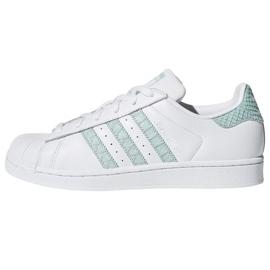 Bianco Scarpe Adidas Originals Superstar in CG5461