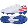 Scarpe da calcio adidas Nemeziz Messi 19.1 Fg M F34402