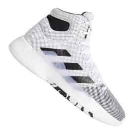Scarpe Adidas Pro Bounce Madness 2019 M BB9235 bianco bianco