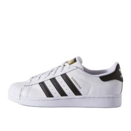 Scarpe Adidas Originals Superstar Fundation Jr C77154 bianco